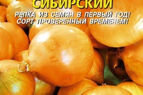 Сибирский лук, однолетний сорт: описание