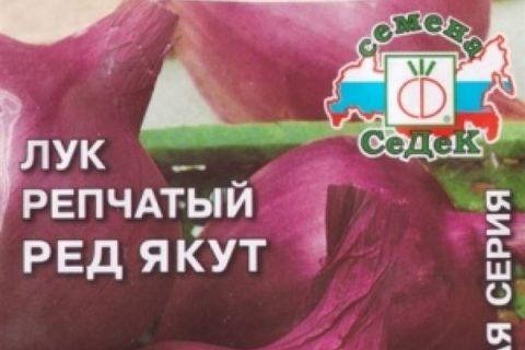 Сорта красного репчатого лука для Подмосковья, для Сибири, для средней полосы, для хранения, описание с фото, отзывы, крупные, урожайные