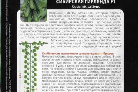 Огурец Лист F1: отзывы, описание сорта и характеристики, фото семян, посадка и уход
