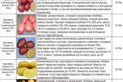 Сорт картофеля Скороплодный. Описание, фото, отзывы
