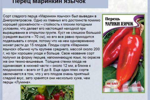 Перец Полет F1: характеристика и описание сладкого болгарского сорта, отзывы об урожайности, фото семян Седек