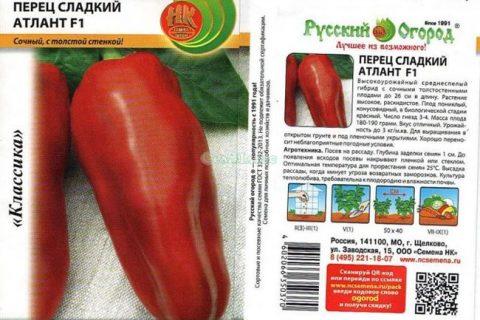Карат — сорт растения Перец сладкий