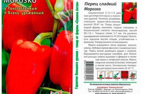 Красный Нос — сорт растения Перец сладкий