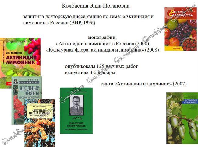 Коллекция редких ягодных культур, созданная Э.И. Колбасиной в Подмосковье