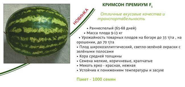 Этапы селекционного процесса при создании сорта арбуза малахит