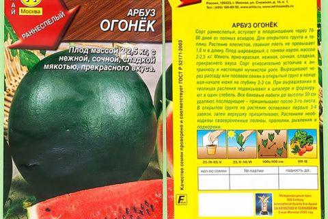 Арбуз Огонек: описание сорта, фото поспевших плодов, преимущества и недостатки