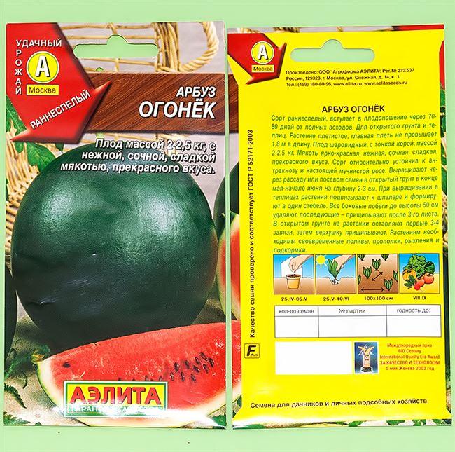 Сорт арбуза Огонёк: описание и правила выращивания