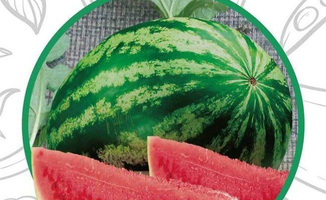 Описание сорта арбуза «Фотон», характеристики и тонкости выращивания, урожайность