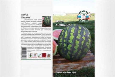 Арбуз Холодок — описание сорта, выращивание, семена, отзывы