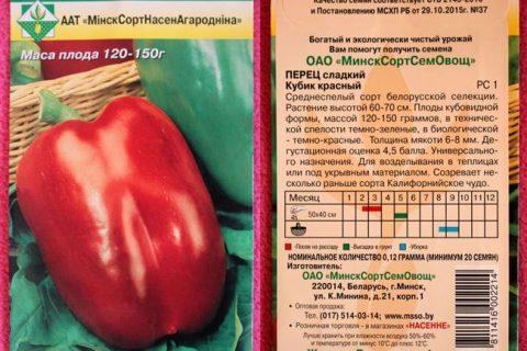 Семена Перец комнатный F1 Гарда Файервокс : описание сорта, фото