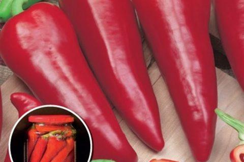 Ранние сорта перцев для открытого грунта, лучшие
