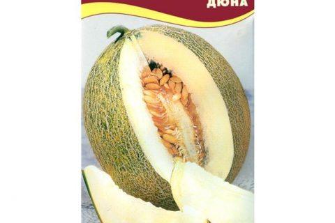 Дюна — сорт растения Дыня
