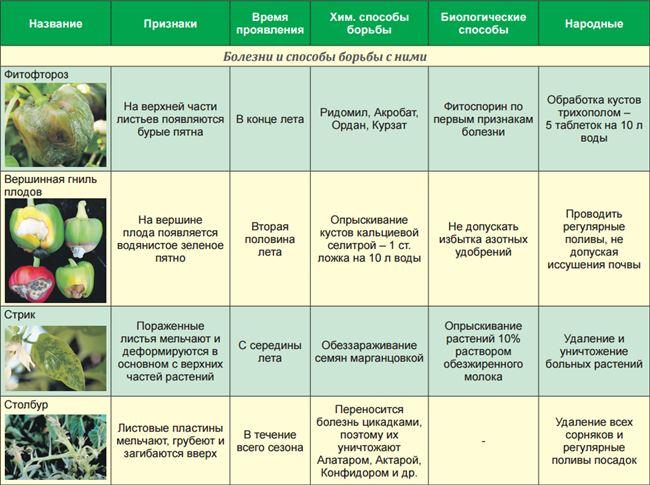 Лечение заболеваний и профилактика появления вредителей