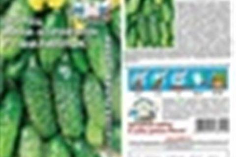 Огурец Арина: описание, выращивание, уход, фото