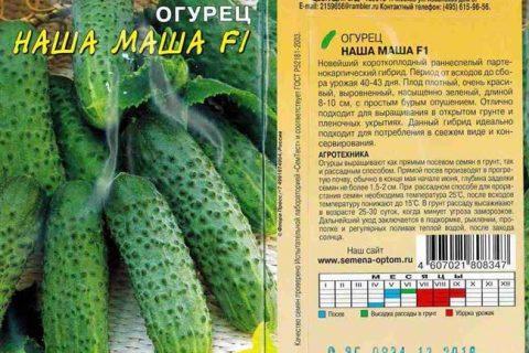 Огурец Баба Маша f1: описание  сорта, фото, посадка и уход, отзывы о семенах Аэлита
