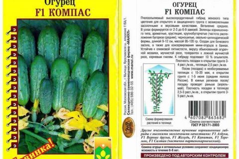 Огурец Барин F1: описание сорта, отзывы об урожайности, фото и видео