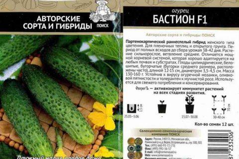 Огурец Бастион F1 семена — низкая цена, описание, отзывы, продажа