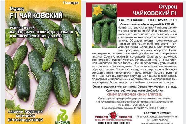 Лучшие сорта огурцов с описанием — самые урожайные и вкусные