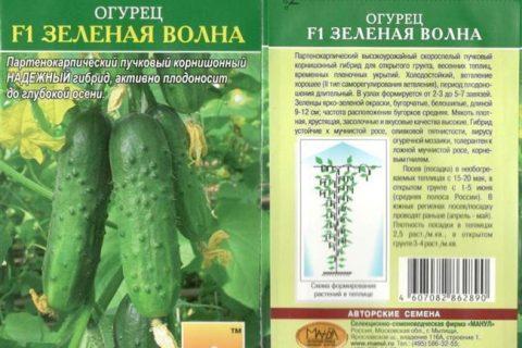 Отзыв о Семена огурца Мир семян «Кит» | Это огурцы?оО