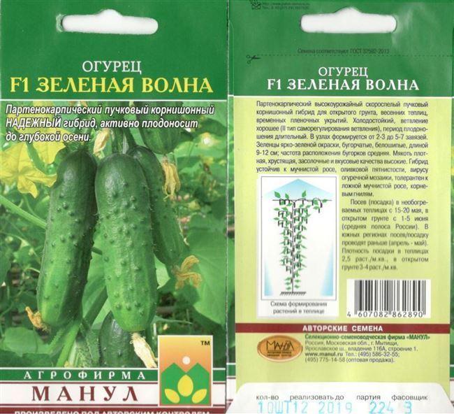 Сорта длинных огурцов выбираем самые урожайные
