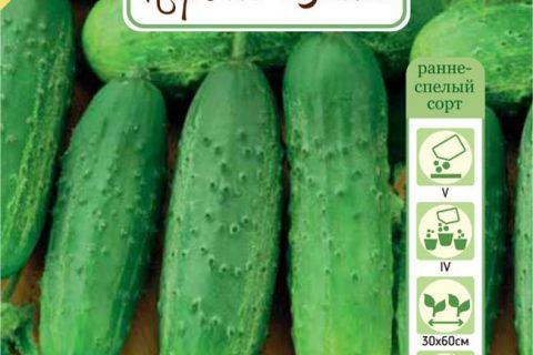 Сорт растения Огурец — Крепыш. Свойства и характеристики сорта Крепыш. База сортов и гибридов растений для выращивания на своем участке. Подбор сортов по критериям.