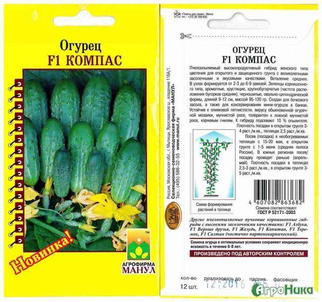 Лучший сорт для засолки с длительный плодоношением — огурец Петровский f1: описание и отзывы