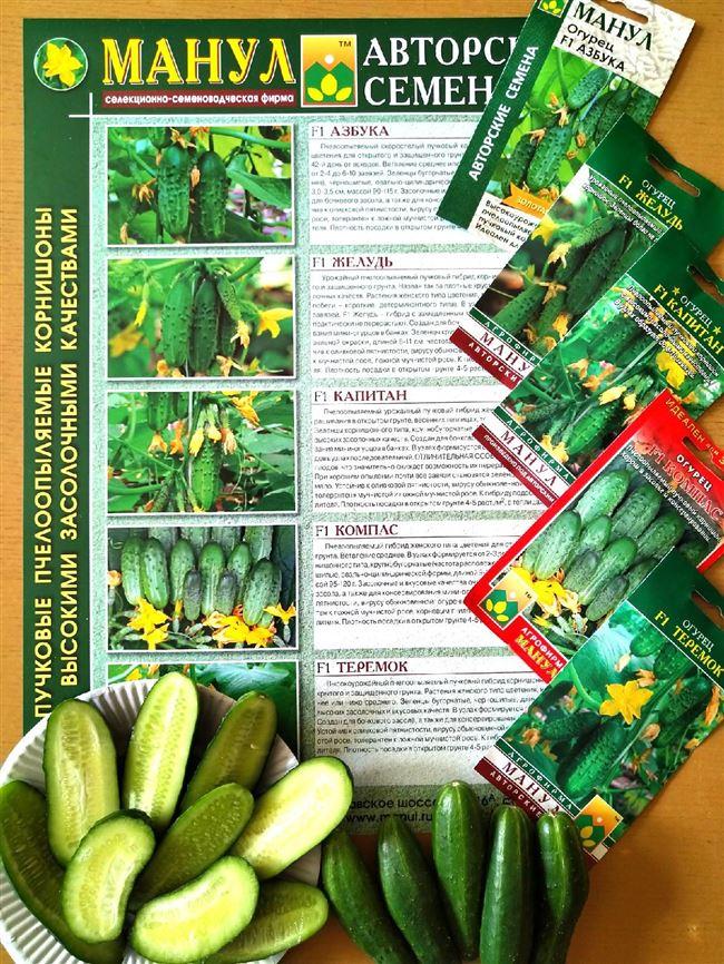 Получила идеальный набор от агрофирмы Манул для выращивания на Урале. Обзор семян