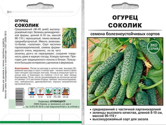 Огурцы Прайм f1 – новый любимчик овощеводов среди партенокарпических растений культуры