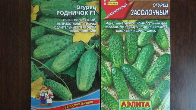 Универсальные плоды со сладковатым вкусом — огурцы Премиум f1: полное описание