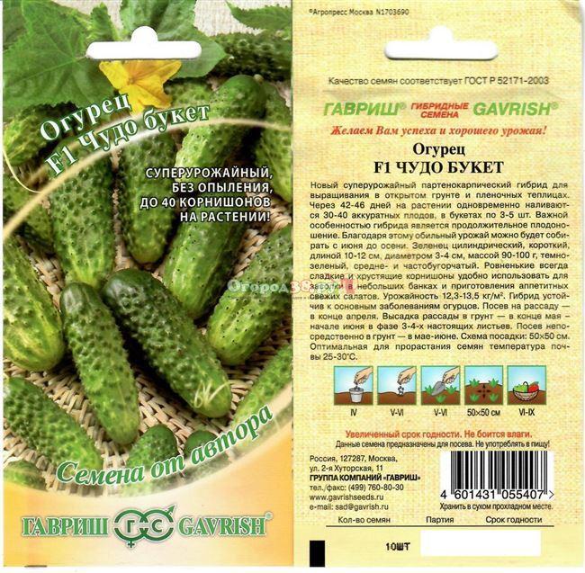 Огурцы Экспресс F1: характеристика и правила выращивания сорта