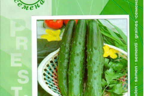 Сорт растения Огурец — Тести Грин, Свойства и характеристики сорта