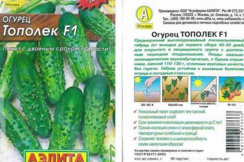 Огурец Тополек F1: отзывы о выращивании, описание сорта и характеристика, посадка и уход, фото семян