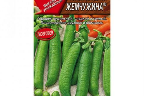 Горох Президент лущильный овощной  DESCRIPTION