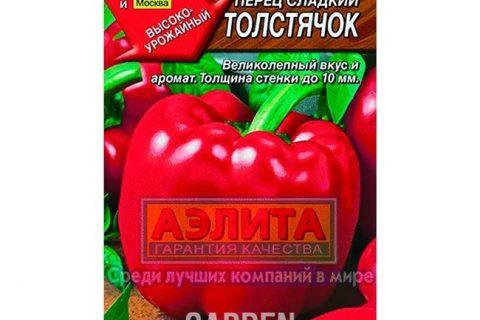 Перец Толстячок: характеристика и описание сорта, условия для выращивания