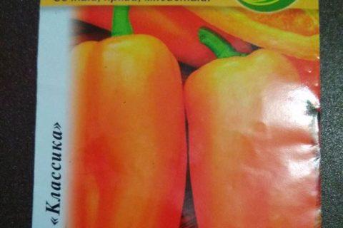 Перец сладкий Янтарь: описание сорта, отзывы и фото, урожайность