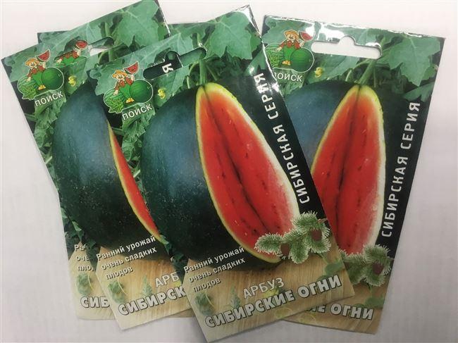 Арбуз сибирские огни, отзывы о сорте, рекомендации по выращиванию