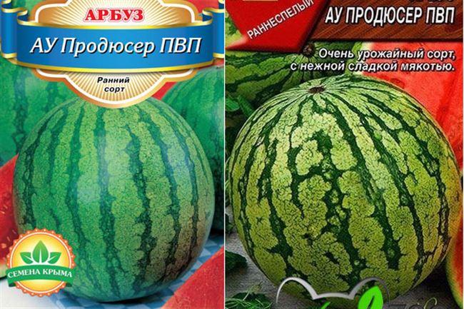 Характеристика арбуза АУ Продюсер