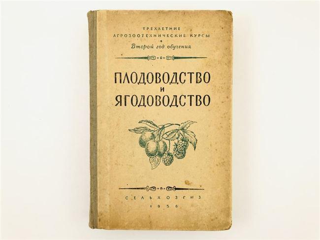 Заключение диссертации по теме «Плодоводство, виноградарство», Иваненко, Феликс Константинович