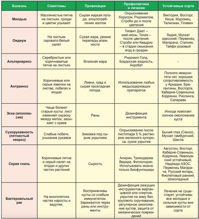 Болезни и вредители, методы борьбы и профилактики
