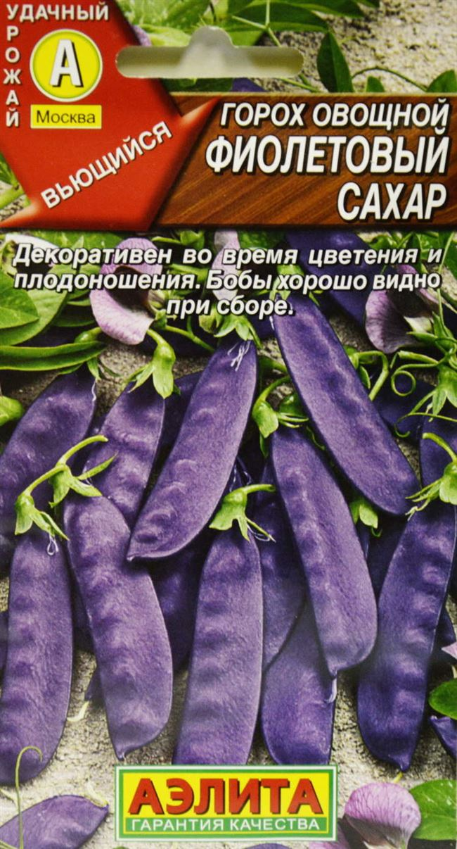 Характеристика фиолетового гороха