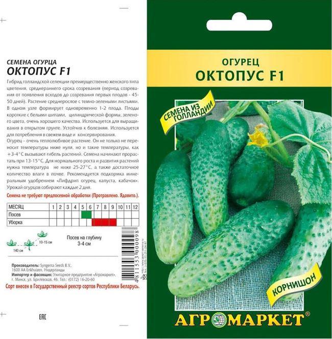 Заказать семена огурца Октопус F1