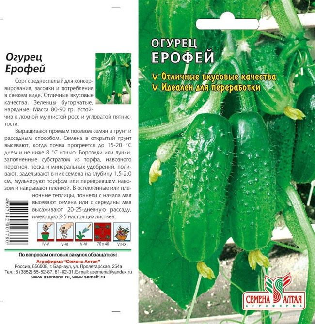 Характеристика внешнего вида растения и зеленцов