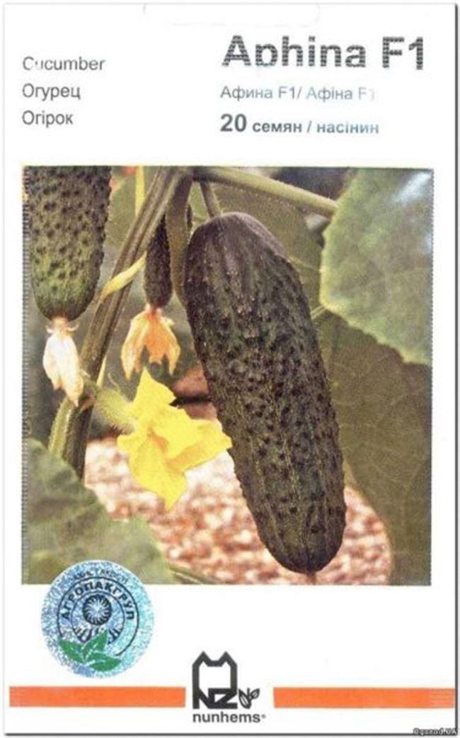 Огурец Слайс Кинг F1 (1000 семян), семена, уход, посадка