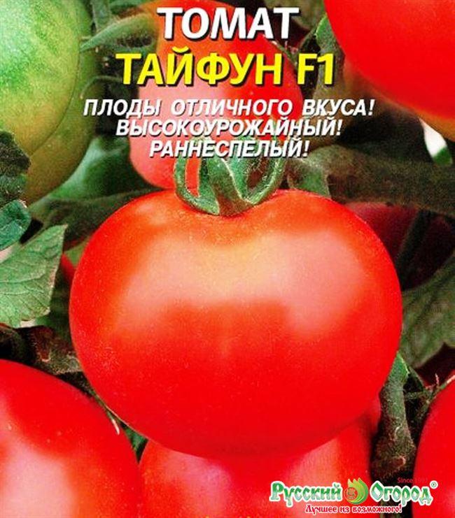 Описание и характеристика томатов Тайфун F1, отзывы, фото