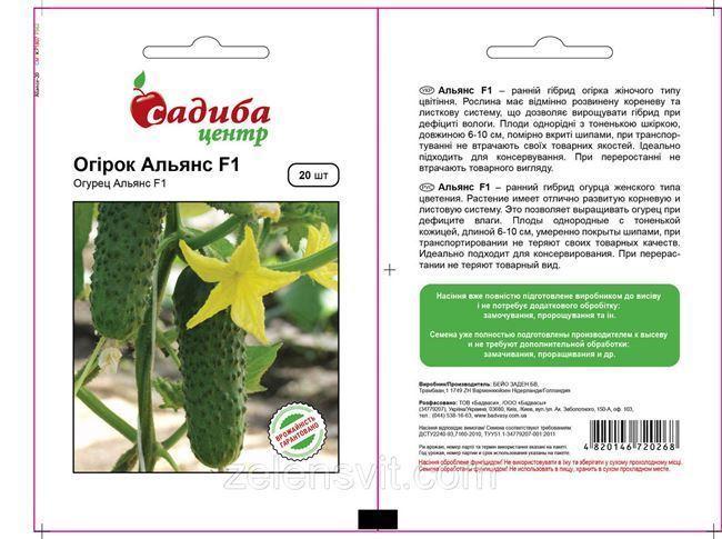Общая характеристика растения