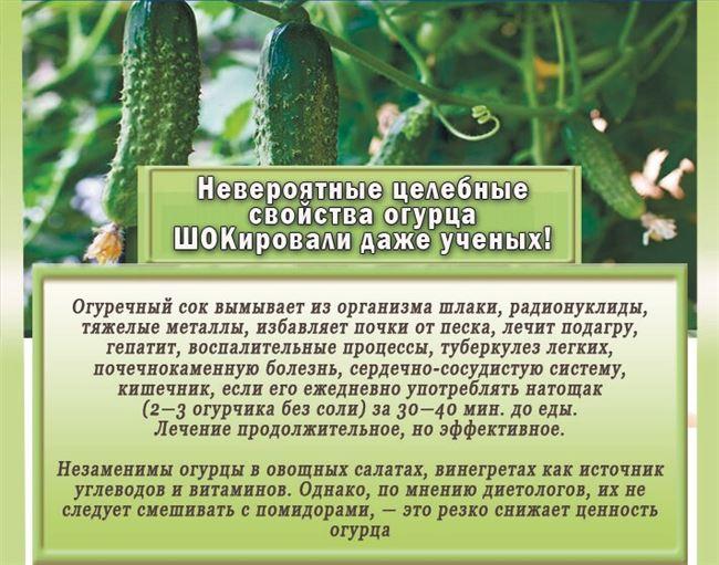 Вкусовые свойства корнеплодов