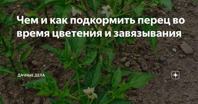 В период цветения