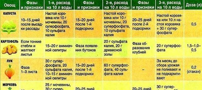 Правила и сроки подкормки