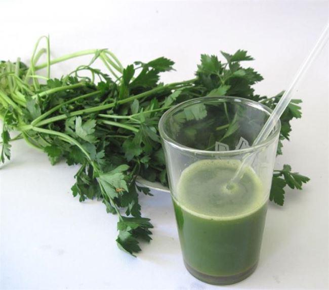 Петрушка - применение в народной медицине, лечение болезней с помощью отвара, настойки, сока или масла Петрушки
