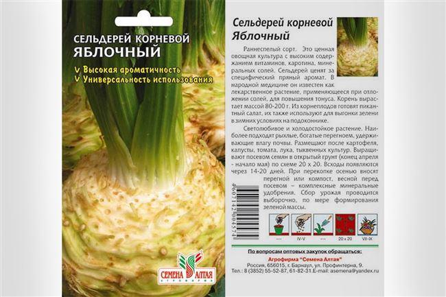 Овощ с пряным ароматом – Яблочный сельдерей. Подробная характеристика, выращивание из семян и уход